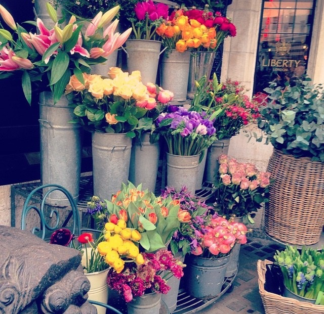 Carnaby Flowers